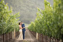 Brix Napa Wedding Photographers