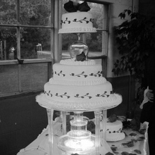 wedding cakes springfield oh marianne s kitchen in springfield ohio 937 244 3300 25518