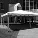 Youngstown Party Rentals - Furniture Rental, Party Supplies for